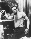 Marlon Brando - A Streetcar Named Desire Photo