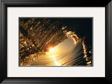 Golden Sunrise Curl Prints by Woody Woodworth