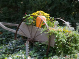 Decorative Wagon and Pumpkin, Ste. Genevieve, Missouri, USA Photographie par Walter Bibikow