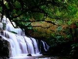 Purkenui Falls, New Zealand Photographic Print by John Banagan