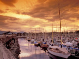 Boats at Sunset, Comox Harbor, British Columbia Photographic Print by Brent Bergherm