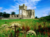 Tintern Abbey Near New Ross, New Ross, Ireland Photographic Print by Richard Cummins