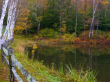 Fall Colors in the Galton Pond, Gralton, Vermont, USA Photographic Print by Joe Restuccia III