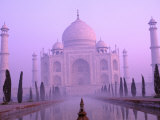 Taj Mahal at Dawn, Agra, India Fotografiskt tryck av Pete Oxford
