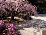 Japanese Gardens in Washington Park, Portland, Oregon, USA Photographic Print by Janis Miglavs