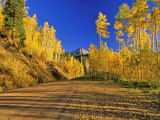 Gravel Road with Autumn Color, San Juan National Forest, Colorado, USA Photographic Print by Chuck Haney