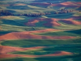 Palouse Region From Steptoe Butte, Whitman County, Washington, USA Photographic Print by Brent Bergherm