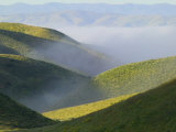 Temblor Range, Overlapping Hills in Fog, Kern County, California, USA Photographic Print by Terry Eggers