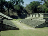 Mayan Ruins at Copan, Great Plaza, Honduras Photographic Print by Paul Franklin