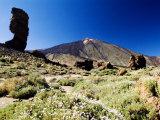 Mount Teide, Tenerife Fotografisk tryk af Martin Page