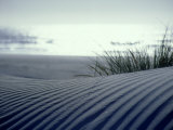 Sand Dune, New Zealand Photographic Print by Tobias Bernhard