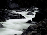 Whitewater River, USA Prints by Michael Brown