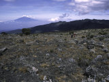 Rocky Terrain with Mountain in the Distance, Kilimanjaro Photographic Print by Michael Brown