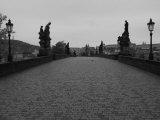 City of Prague, Czech Republic Fotografie-Druck von Keith Levit