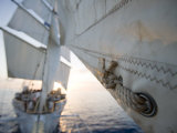 Detail of Star Clipper Sails, Netherlands Antilles Photographic Print by Holger Leue