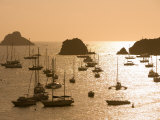 Yachts at Sunset, Gustavia, St. Barts Photographic Print by Holger Leue