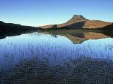 Stac Pollaidh from Loch Lurgainn, Scotland Photographic Print by Iain Sarjeant