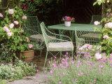 Green Metal Table & Chairs Beneath Arbour Photographie par Mark Bolton