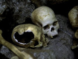 Skulls and Bone, Indonesia Photographic Print by Michael Brown