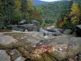 Fall Foliage, Appalachian Trail, White Mountains, New Hampshire, USA Photographic Print by Jerry & Marcy Monkman