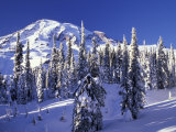 Mount Rainier after a Winter Storm, Mt. Rainier National Park, Washington, USA Photographic Print by Jamie & Judy Wild
