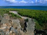 Husuni Kubwa, Kilwa Ruins, Kilwa Kisiwani, South Coast, Tanzania Photographic Print by Ariadne Van Zandbergen