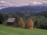 Rural Landscape of Poiana Marukei Region, Romania Photographic Print by Gavriel Jecan