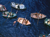 Venders Selling Their Wares from Small Boats in the Harbour at Funchal, Madeira Portugal, 1970s Photographic Print