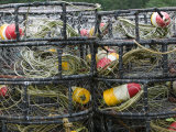 Crabbing Nets in Tee Harbor, Juneau, Southeast Alaska, Alaska, USA Photographic Print by Walter Bibikow