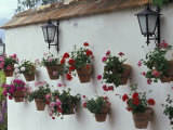 Geraniums along White Wall of Palacio de Mondragon, Ronda, Spain Photographie par John & Lisa Merrill