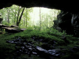 Entrance to Russell Cave National Monument, Alabama, USA Fotografie-Druck von William Sutton