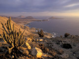 Desert Coast and Pacific Ocean, Atacama Desert, Pan de Azucar National Park,Chile Photographic Print by Andres Morya