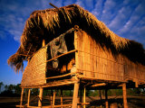 Fisherman's Cottage with Thatched Roof and Walls, Si Phan Don, Laos Photographic Print by Anthony Plummer