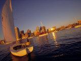 Boston, Massachusetts, USA Fotografiskt tryck av Alexander Nesbitt