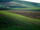 Rolling Hills and Ploughed Field in Spring, Palouse, U.S.A. Photographic Print by Ann Cecil