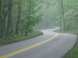 Forest Road in Spring, Daniel Boone National Forest, Kentucky, USA Photographic Print by Adam Jones