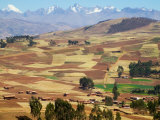Farmland in the Sacred Valley, Cusco, Peru Photographic Print by Keren Su