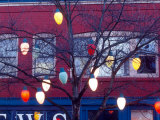 Christmas Tree Lights, Seattle, Washington, USA Photographic Print by William Sutton
