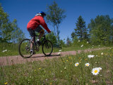 A Man Rides Along a Bike Trail on a Summer Day, Charlottetown, Prince Edward Island, Canada Photographic Print by Taylor S. Kennedy