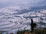 Hani Girl with Rice Terraces, China Photographic Print by Keren Su