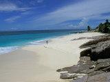 Scenic Tropical Beach, Seychelles Photographic Print by Nik Wheeler