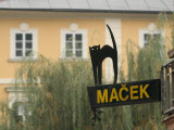 Cafe Sign at Macek, Ljubljana, Slovenia Photographic Print by Jonathan Smith