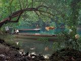 Blue Lagoon, Jamaica, Caribbean Photographic Print by Robin Hill