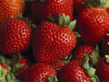 Fresh Strawberries Photographic Print by Taylor S. Kennedy