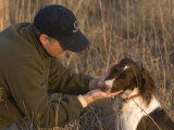 A Male and His English Springer Spaniel in a Nebraska Pasture Photographic Print by Joel Sartore
