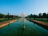 Taj Mahal, Uttar Pradesh, India Fotografisk tryk af Dee Ann Pederson