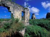 Sugar Plantation Ruins, Betty's Hope, Antigua, Caribbean Photographic Print by Nik Wheeler
