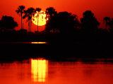 Charles Sleicher - Tropical Sunset, Botswana Fotografická reprodukce