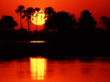 Tropical Sunset, Botswana Photographic Print by Charles Sleicher
