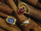 Cinnamon Bark Shows off Rings of Ruby, Diamond and Sapphire Found in the Wreckage Photographic Print by Sisse Brimberg